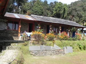 This is where we stayed at Forest Camp. A really pretty place with a very cozy dining room. We stayed here one night on the way up and again on our return from the Mardi Himal trek.